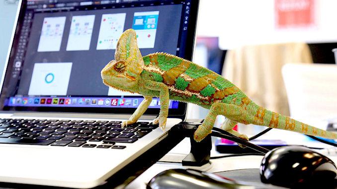 Kameleoon crée des expériences personnalisées avec l'intelligence artificielle @clesdudigital